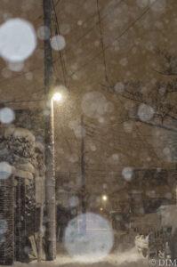 雪が降る夜に思い通りの写真を撮った!PENTAX KP作例