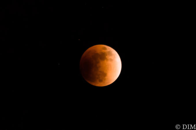 いつだって月は丸いことを実感したスーパーブルーブラッドムーン